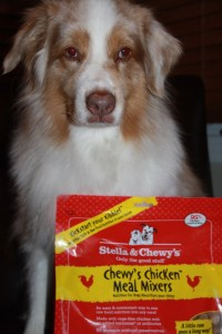 Mixing it up with Stella & Chewy's Meal Mixers