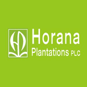 horana-plantation