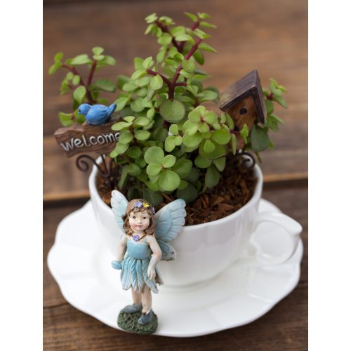Medium Crop Of Fairy Garden Instructions