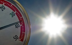 Meteo, oggi caldo da bollino rosso. Anche a Firenze scatta l'allerta