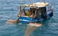 Fermo pesca: il governatore Enrico Rossi scrive ai pescatori di Viareggio