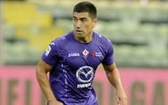 Fiorentina, rientra Ambrosini ma si ferma Pizarro