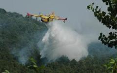 Incendi, a Livorno distrutti 3 ettari di macchia