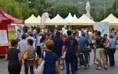 Sanità, a Pietrasanta il Festival della salute