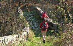 Expo 2015: la Regione Toscana rilancia il gran progetto della Francigena