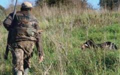 Sparano ed uccidono un cane scambiandolo per un cinghiale