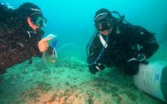Piombino, sub di 28 anni trovato morto a venti metri di profondità