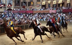 Siena, Palio dell'Assunta: nella tratta la sorte favorisce Lupa, Aquila e Drago