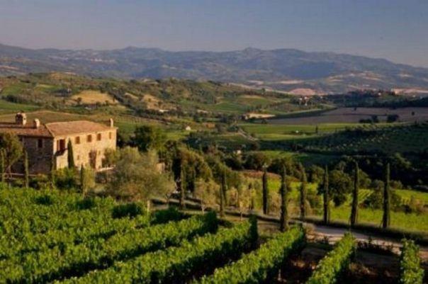 Montalcino, campagna toscana
