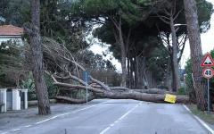 Toscana, uragano: 3 milioni per le famiglie che hanno subìto danni alla prima casa