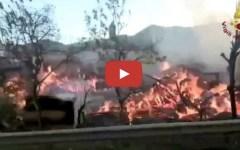 Prato, incendio a una falegnameria. Evacuate abitazioni e scuole. Traffico in tilt (Video)