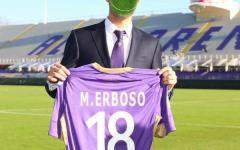 Fiorentina: per lo stadio Franchi nuovo manto erboso. Ma sul web si scatena l'ironia dei tifosi