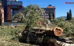 Firenze: proroga al 30 settembre per chiedere i danni del nubifragio di agosto