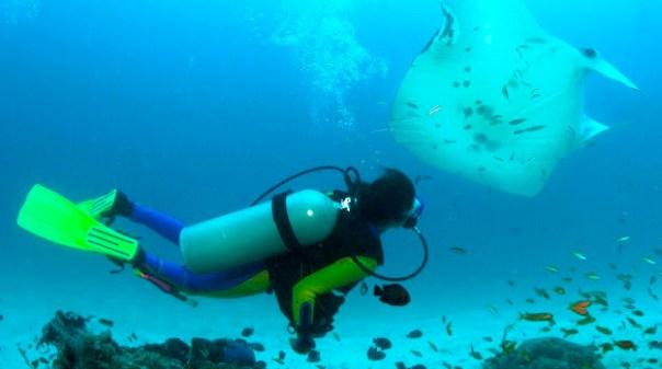 Un sub ha perso la vita durante un'immersione all'isola di Giannutri