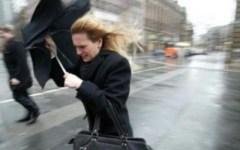 Firenze, allerta per vento forte: rami spezzati sugli alberi, pericolo sulle strade