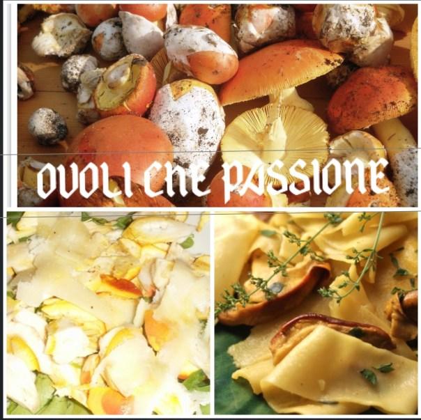 ovoli-che-passione