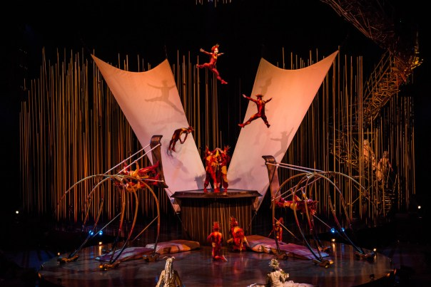 Il Cirque du Soleil