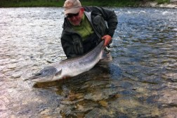 Jan Harry sen salmon on dry fly