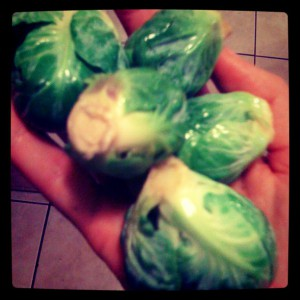 Brussels sprouts healthy eating tips