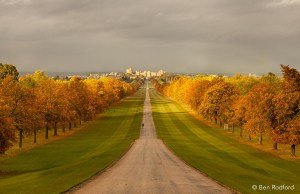 The Long Walk Of Windsor Castle