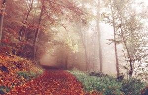 autumn-bad-pyrmont-germany-by-sebastian-unrau