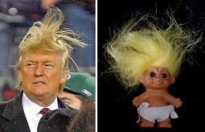 Things That Look Like Donald Trump