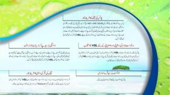 Hawksbay Scheme 42 Karachi Brochure