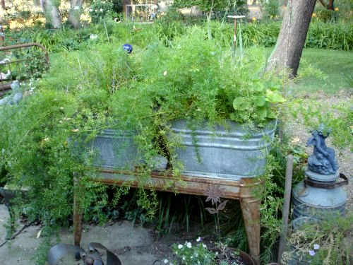 Beautiful Using Galvanized Containers In The Garden