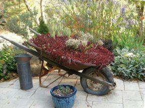 Vintage Garden Wheelbarrows