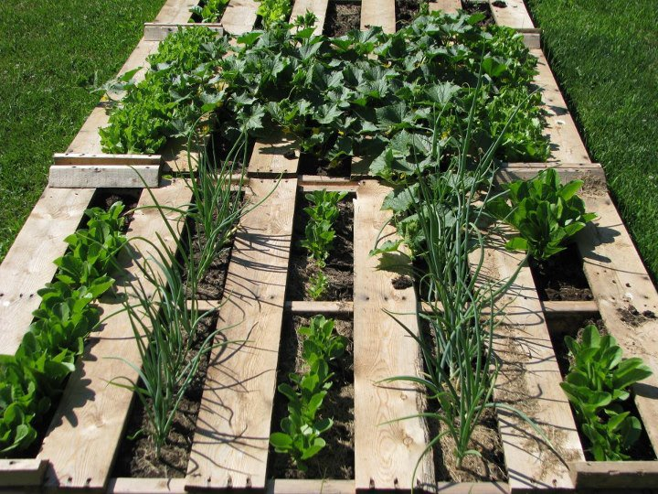 Using ordinary pallets in a fantastic garden flea market for Gardening using pallets