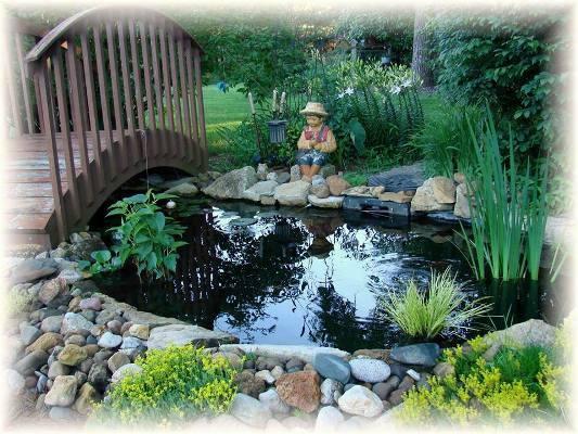 Jeanne Sammons's pond