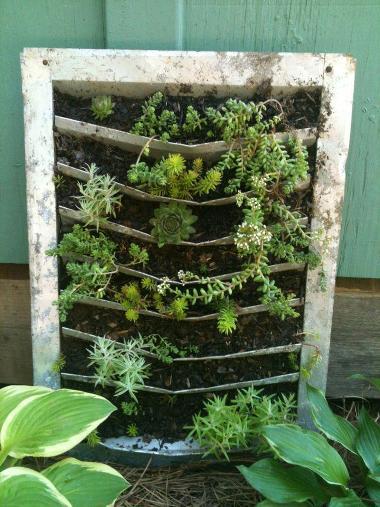 Cindy Barton's planted metal vent