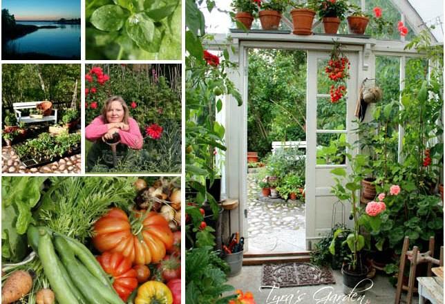 Vintage Window Greenhouse