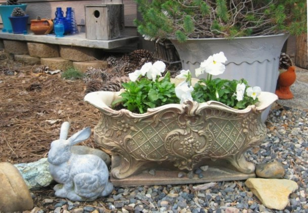 A low urn filled with crisp white pansies, verdigris rabbit and heart stone in Sue Langley's entry garden