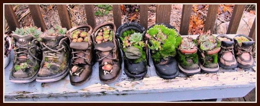 Kirk Willis's 'family' of boots