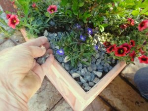 Latest dirt on growing in Flea Market containers