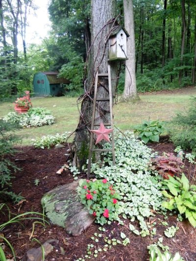 Christine Cross's charming ladder against the tree