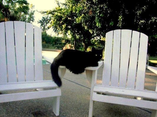 Come on and sit,...don't mind me...
