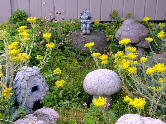 Mushrooms from hypertufa similar to the one Arlene Brenneman made