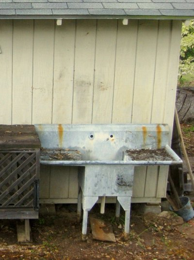 Before- My old galvanized sink