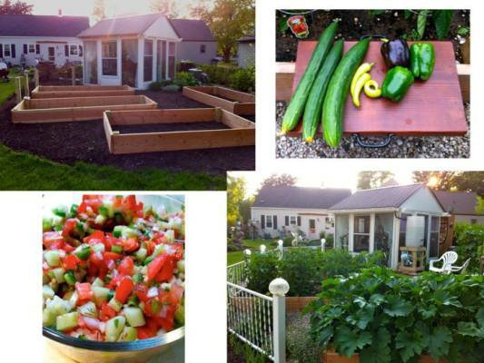 """Ann Elias says, """"Garden FRESH!!! We are loving the fruits of our labor!!"""""""
