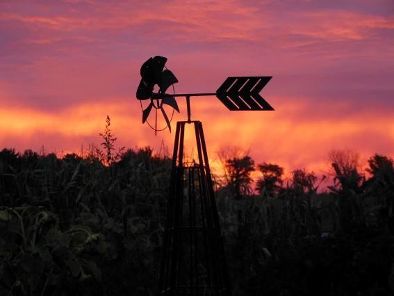Kathie Schram's sunset sillouette
