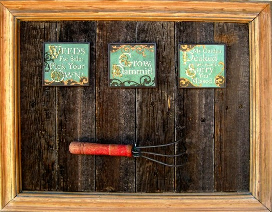 Another rustic assemblage from Brian Stephan's garden