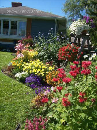 Carlene's uses vibrant color in her front flower bed