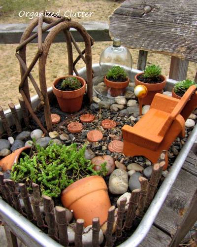 Carlene created this terracotta and succulent miniature garden