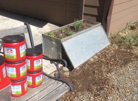 I displaced some soil with the Folger's cans I save