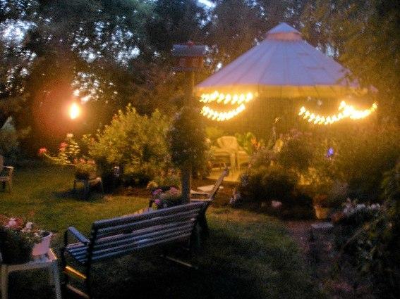 Cindi Martin's garden at dusk