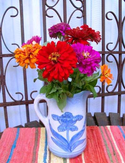 Julie Brown's cut flowers look great