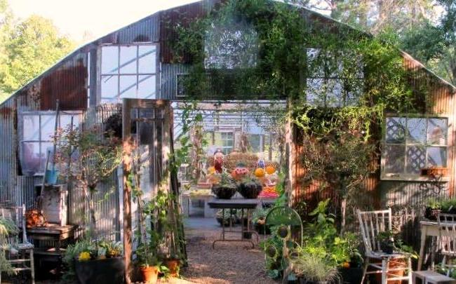 Kathy's Gorgeous Greenhouse