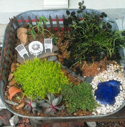 Rachel Goins's fairy garden in a tub